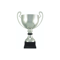 """16 1/2"""" Silver plated Italian trophy cup with wood accent"""
