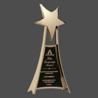 """4 3/4"""" x 10 3/4"""" Metal Star Trophy in Gold Finish"""