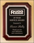 MAP4561 - Service Sales Plaque Award