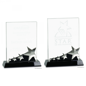Rectangle Crystal with Silver Stars Award