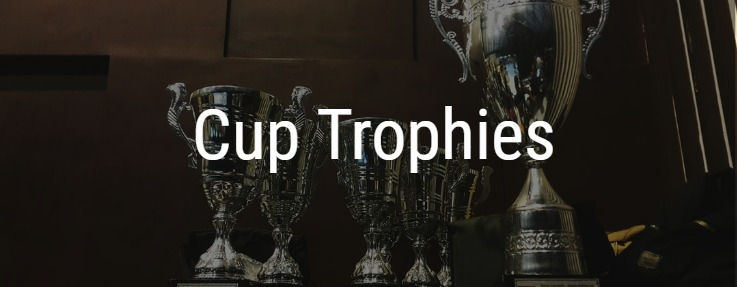 Cup Style Trophies
