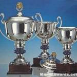 Trophy Cups, Silver Plated, On Mahogany Base- Lid Not Included 1