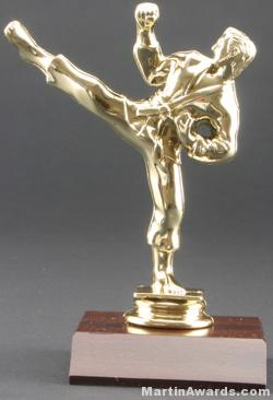 Male Karate Trophy