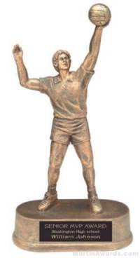 Male Volleyball Gold Resin Trophy