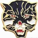 3/4″ Enameled Wildcat Mascot Pin 1