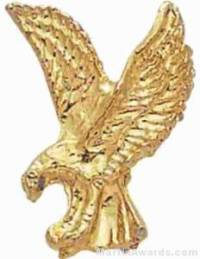 "7/8"" Eagle Chenille Letter Insert Pins"
