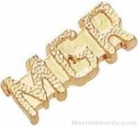 """7/8"""" Manger Chenille Letter Insert Pins"""