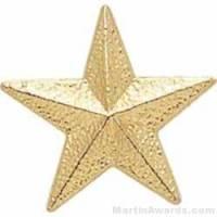 """7/8"""" Star Chenille Letter Insert Pins"""