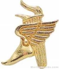 "1"" Winged Foot Torch Chenille Letter Insert Pins"