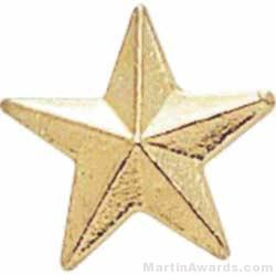 3/8″ Small Star Chenille Pin 1