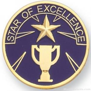 "1"" Star Of Excellence Lapel Pin"