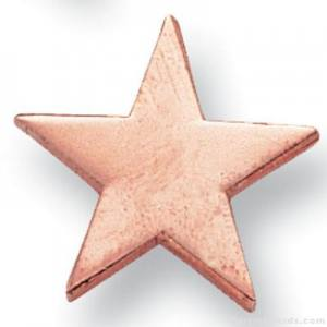 "5/8"" Bronze Star Lapel Pin"